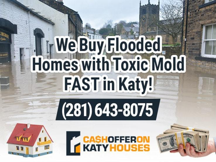katy water damage and mold